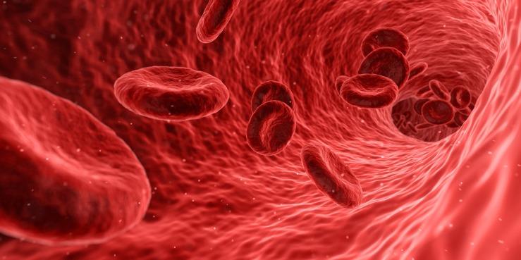 blood-1813410_1920.jpg